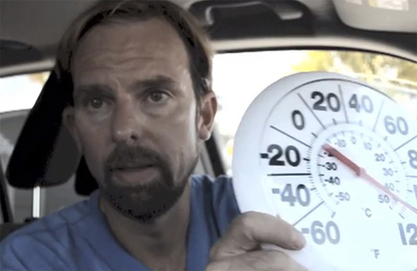Must Watch: Veterinarian Shows How Hot Cars Hurt Dogs - Ecorazzi | Automobile & Cars Reviews | Scoop.it