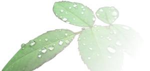 Multivitamin Tablets UK | Health Supplements | Scoop.it