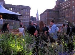 Urban Farming: How City Restaurants Can Get the Freshest Local Produce | Sustainability & Community Resilience | Scoop.it
