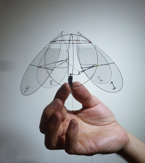 Tiny Robot Flies Like a Jellyfish   Complex Insight  - Understanding our world   Scoop.it