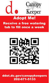 BBB Systems | Creative Web Solutions: Adopt a D.C. Tree via QR Code | QR Code Innovations | Scoop.it