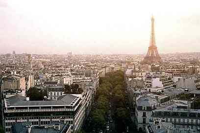 France Says New Roofs Must Be Covered In Plants Or Solar Panels | Nature | Scoop.it