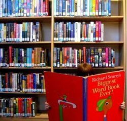 Why libraries and librarians are so important | On Our Minds | School Library Advocacy | Scoop.it