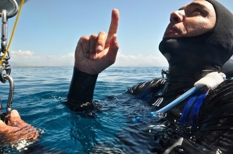 the science of free diving and some technical numbersThe-French-Job | ScubaObsessed | Scoop.it