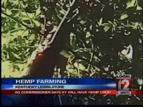 Hemp Farming in Kentucky - WKRC TV Cincinnati | Hemp | Scoop.it