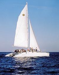 Cabo San Lucas & Baja Sur Vacation Rentals   The Joy of Mexico   Scoop.it