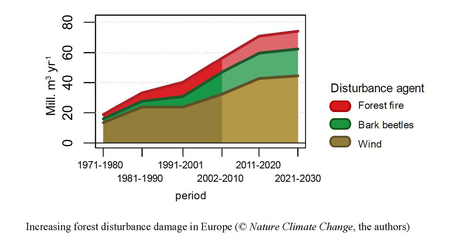 Climate change is fueling forest disturbances | Sustain Our Earth | Scoop.it