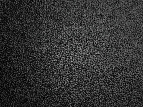 Art Black Fur PPT Backgrounds   PowerPoint Backgrounds   Scoop.it
