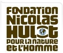 Réintégrer la biodiversité au coeur des enjeux et des décisions | Fondation pour la Nature et l'Homme créée par Nicolas Hulot | Responsabilité humaine collège | Scoop.it