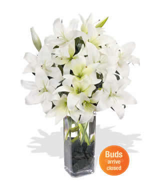 4 stem Stargazer deliver to your Father on Father's Day – White_Stargazers_Bouquets#014 | mother's day flower | Scoop.it