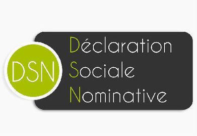 Déclaration Sociale Nominative : kézako ? | TPE - PME & Startup | Scoop.it