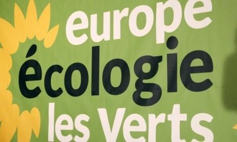 EELV : David Cormand élu secrétaire national à la place de Cosse - BFM TV | Actualités écologie | Scoop.it