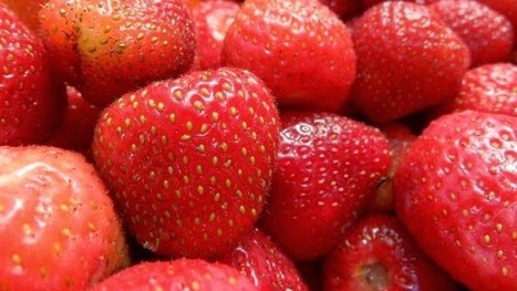 Recette de fraises à l'eau de vie | CRAKKS | Scoop.it