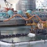 Après Fukushima… » Biblio B.U.S. | Relevés radioactivité | Scoop.it