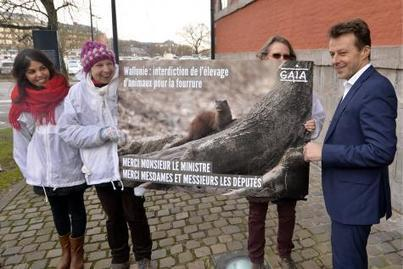 Le parlement wallon interdit les élevages d'animaux à fourrure   Ces animaux sauvages ou domestiques maltraités par l'homme   Scoop.it