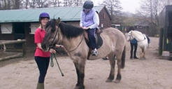 Horse Riding Lessons | beoleyequestriancentre | Scoop.it