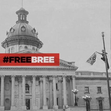 Bree Newsome: In Her Own Words | SocialAction2015 | Scoop.it