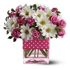 White daisy spray chrysanthemums and pink spray roses are delivered in a Teleflora pink glass cube vase decorated with a polka-dotted ribbon. | Amour Flowers | Scoop.it