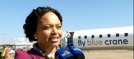 Black History Spotlight: She is the 1st Black Woman to Own an Airline and You Need to Know Her Name | BlackandMarriedWithKids.com | Organizational Development & Leadership | Scoop.it