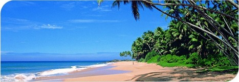 Round-Trip & Beach Stay : Airwing Tours – Sri Lanka | Sri Lanka Tour Packages | Scoop.it