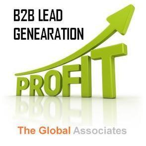 B2B lead generation companies: Insights for 2013 | Veille B2B | Scoop.it