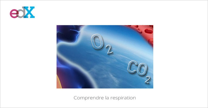 [Today] MOOC Comprendre la respiration | MOOC Francophone | Scoop.it