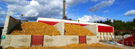 Chaufferie biomasse : le fonds chaleur, bon pour l'économie française | Otras energías | Scoop.it