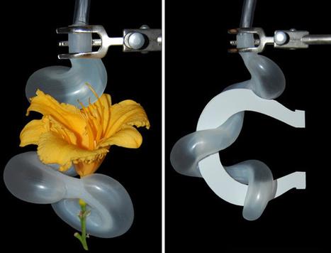 Gentle robotic tentacles can pick up flowers | Amazing Science | Scoop.it