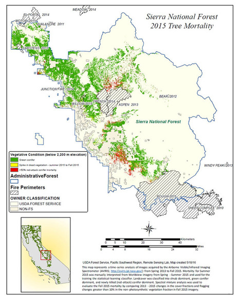 NASA maps California drought effects on Sierra trees | Sustain Our Earth | Scoop.it