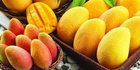 Cara Alami Menghilangkan Jerawat dengan Mangga | kesehatan dan kecantikan | tips info kesehatan dan kecantikan | Scoop.it