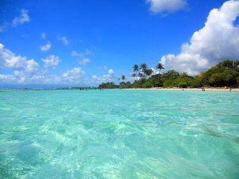 Twitter / DarinOlivia: Plage de Sainte-Anne, Guadeloupe ... | Gpe | Scoop.it