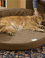 Dog Products for Older Dogs | Beds, Ramps & Car Steps for Older Dogs | Orvis | Florida Dog Rescue | Scoop.it