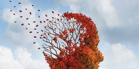 Untangle those inner circuits: Mindfully Change Your Painful Memories | Energy Health | Scoop.it