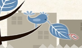 Donnez ou échangez vos plantes avec PlantCatching | Economie Responsable et Consommation Collaborative | Scoop.it