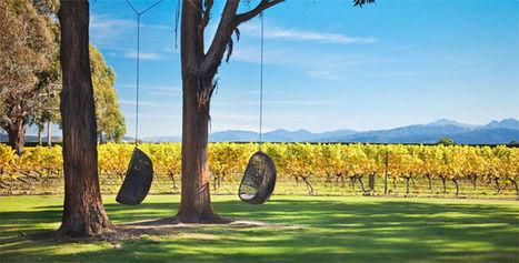 Œnotourisme : escale à Marlborough en Nouvelle-Zélande | Route des vins | Scoop.it