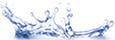 The Dechra Academy | VET NURSING | Scoop.it
