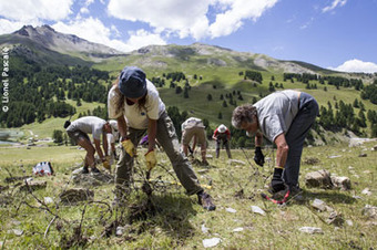 Mountain Wilderness - 10 ans de partenariat et 150 tonnes de déchets militaires en   montagne   Scoop.it