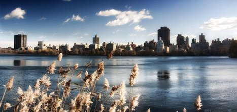 Lovely views of the fragrant New York. Widescreen images of cities and countries. | CityWallpaperHD | Scoop.it