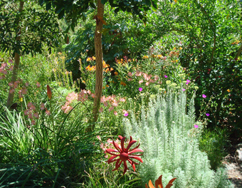 Master Gardeners: Creating a sustainable future with landscaping - Marin Independent Journal | Long Beach Landscaping | Scoop.it