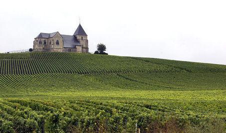 La Champagne et la Bourgogne viticoles inscrites au patrimoine de l'Unesco | Le vin quotidien | Scoop.it