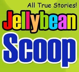 JellyBean Writer and JellyBean Scoop | technologies | Scoop.it