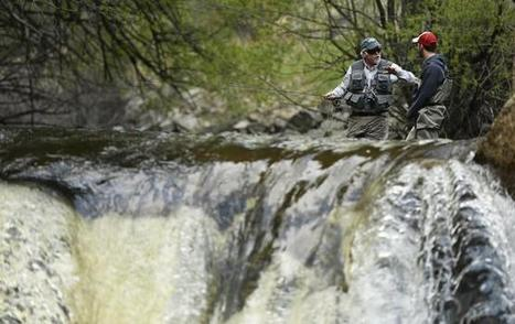 Colorado floods recovery: Fishing, tourism count on health of state's rivers - The Denver Post | Fish Habitat | Scoop.it