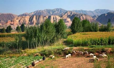 China to flatten 700 mountains for new metropolis in the desert | Chine Actu | Scoop.it
