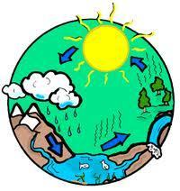 Thirstin's Water Cycle | The Water Cycle | Scoop.it