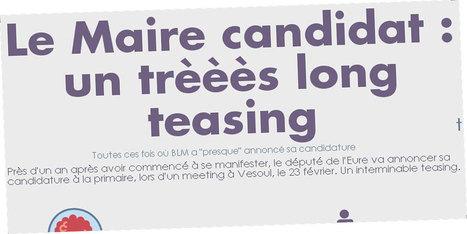 Bruno Le Maire candidat à la primaire de la droite et du centre : un interminable teasing - Le Lab Europe 1 | Communication politique & cie | Scoop.it