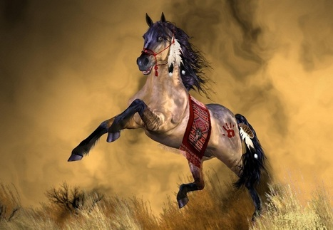 20+ Most Amazing and Inspiring Horse Photography | Jugglu.com - Best for Fun and Photos | Scoop.it