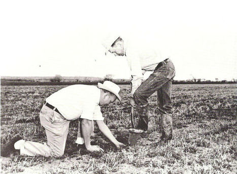 U of A Cooperative Extension observes 100 years of serving Arizonans   Yuma Sun   CALS in the News   Scoop.it
