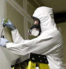 Asbestos Abatement - Asbestos Abatement Vancouver - Red Demo | Asbestos Removal Vancouver | Scoop.it