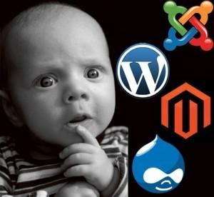 Quand faut-il utiliser un CMS pour son site web ? | Bien communiquer | Scoop.it
