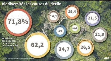 Chasse, pêche, agriculture: des ennemies de la biodiversité pires que le réchauffement | Toxique, soyons vigilant ! | Scoop.it